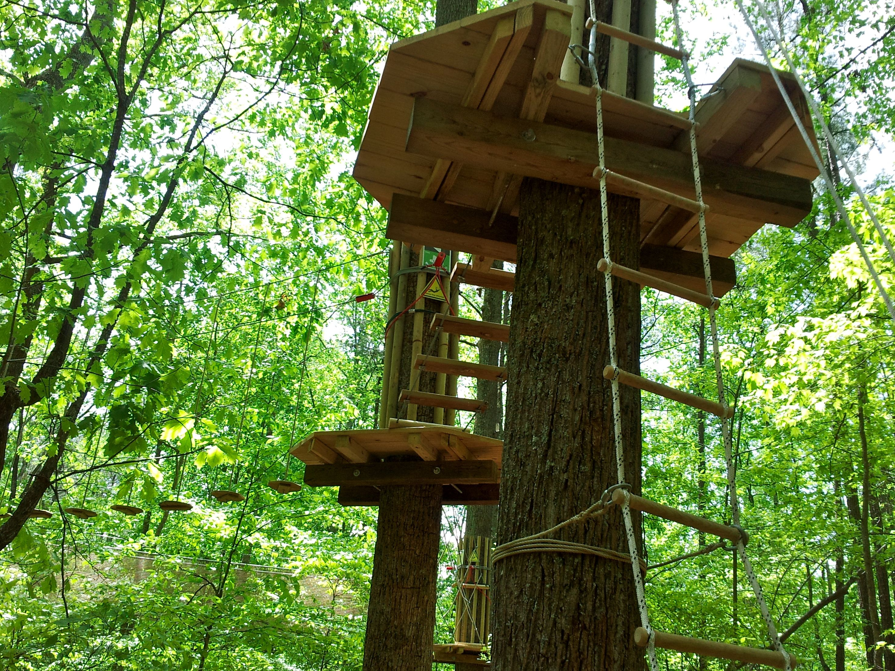 My Treetop Adventure With Go Ape Williamsburg Ask Naoma