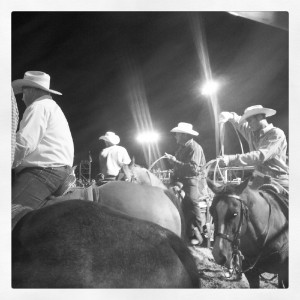khedive rodeo cowboys